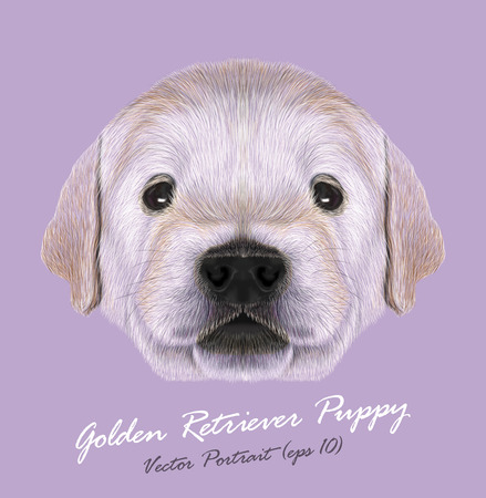 Cute Portrait of Dogs Baby on lilac background