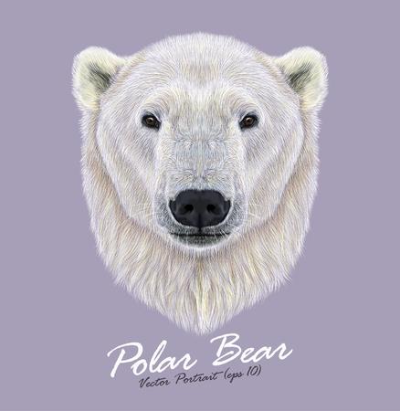 ojos negros: Vector ilustrado Retrato de oso polar en el fondo violeta. . El oso más grande y más al norte.
