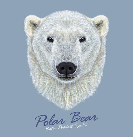 Vector Illustrated Portret van Polar Bear op een blauwe achtergrond. De grootste en meest noordelijke beer. Stock Illustratie