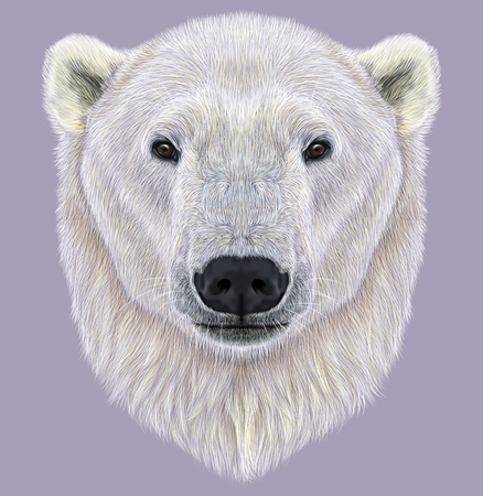 black hair blue eyes: The largest and most northern bear. Polar Bear