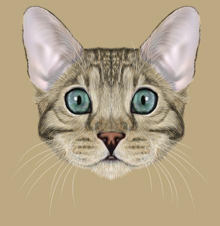 グレーの斑点のある青い目の猫のかわいい顔