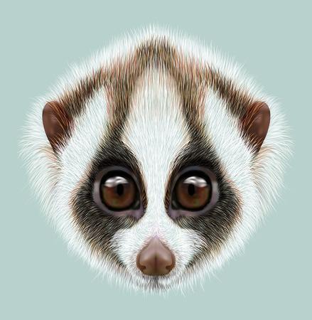 Very cute face of Slow loris on blue background. Standard-Bild