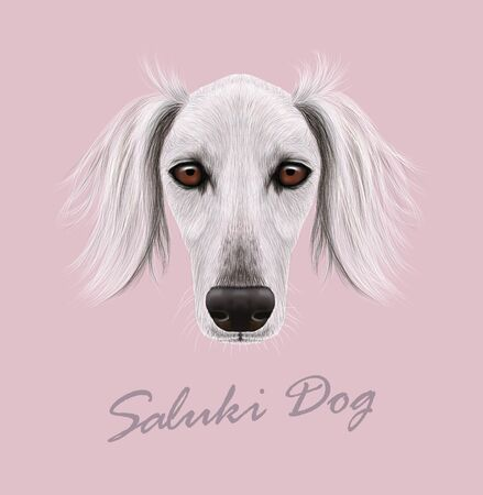 borzoi: Cute face of purebred domestic dog on pink background