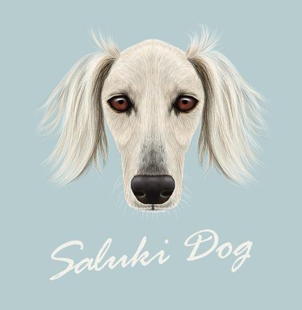 borzoi: Cute face of purebred domestic dog on blue background