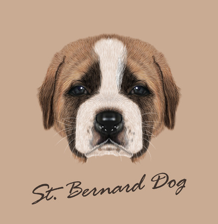swiss alps: Cute face of Domestic Puppy on tan background Illustration