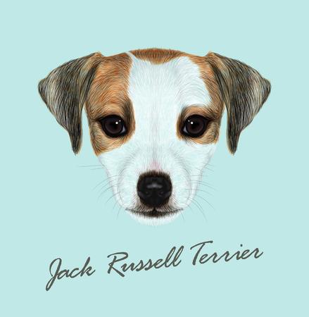 viso carino di cane domestico su sfondo blu.