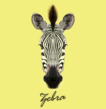 Hoofd van wild paard van Afrika op gele achtergrond. Stock Illustratie
