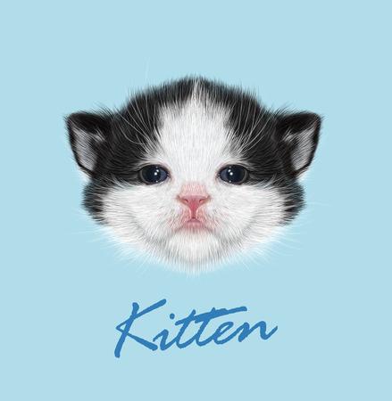 dessin noir et blanc: Vector Illustrated Portrait de chaton domestique. visage mignon de Bicolore sur fond bleu.
