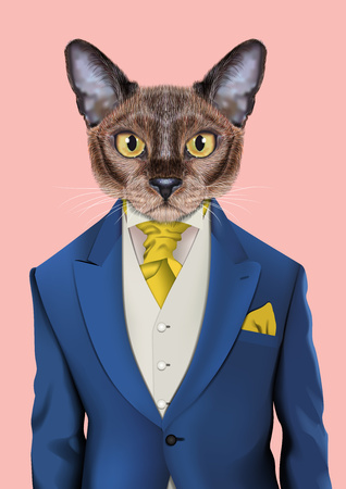 Vector Illustration of domestic cat in a blue color jacket, white vest, yellow tie. Fashion illustration