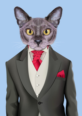 Vector Illustration of domestic cat in a grey color jacket, white vest, red tie. Fashion illustration Illustration