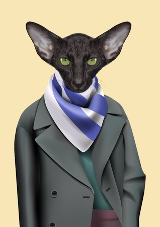 cravat: Vector Illustration of Oriental cat in in a grey raincoat with a striped cravat.