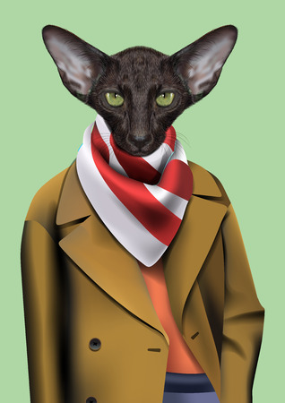 cravat: Vector Illustration of Oriental cat in in a beige raincoat with a striped cravat.