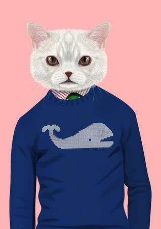 Illustration of Domestic cat in blue sweater with whale. Stock Photo