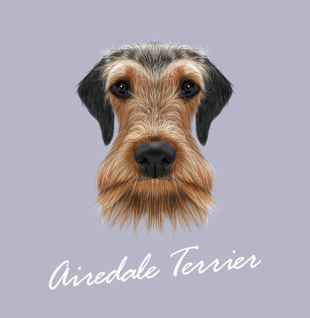 Vector illustrated Portrait of Airedale Terrier on blue background