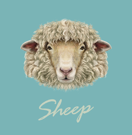 Vector illustrated Portrait of  Ram or sheep on blue background.