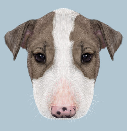 bull illustration cute animals: Illustrated Portrait of  Bull Terrier Puppy on blue background.