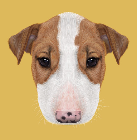 boston bull terrier: Illustrated Portrait of  Bull Terrier Puppy on yellow background.