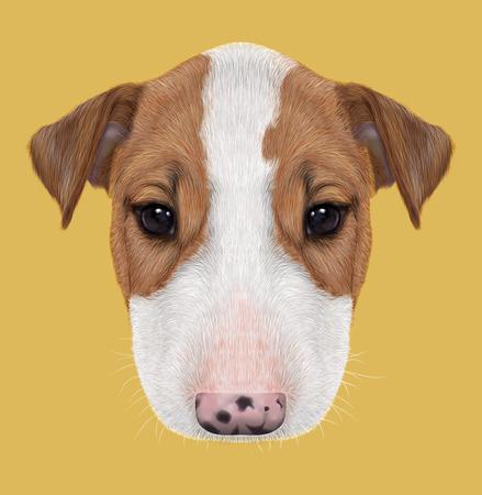 british bulldog: Illustrated Portrait of  Bull Terrier Puppy on yellow background.