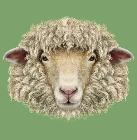 cloven: Illustrated Portrait of  Ram or sheep on blue background Stock Photo