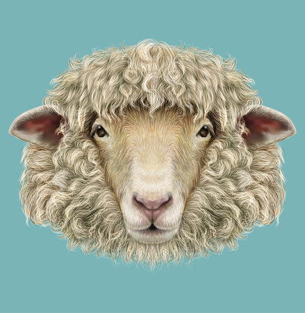 Illustrated Portrait of  Ram or sheep on blue background 版權商用圖片
