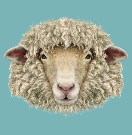ovejas: Ilustrado Retrato de Ram o una oveja sobre fondo azul Foto de archivo