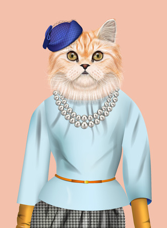 Fashion vector illustration of Persian cat dressed up in elegant outfit and blue cap.