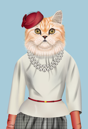 Fashion vector illustration of Persian cat dressed up in elegant outfit and red cap.
