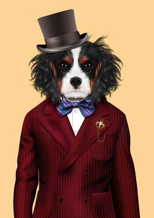 charles: Fashion vector  illustration of Cavalier King Charles Spaniel
