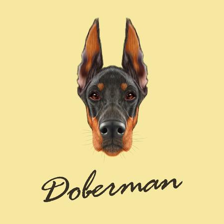 Vector illustrated portrait of black dog on yellow background. 일러스트