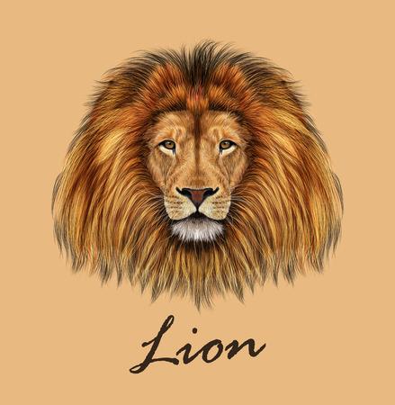 Vector geïllustreerd portret van de Leeuw op tan achtergrond. Stock Illustratie