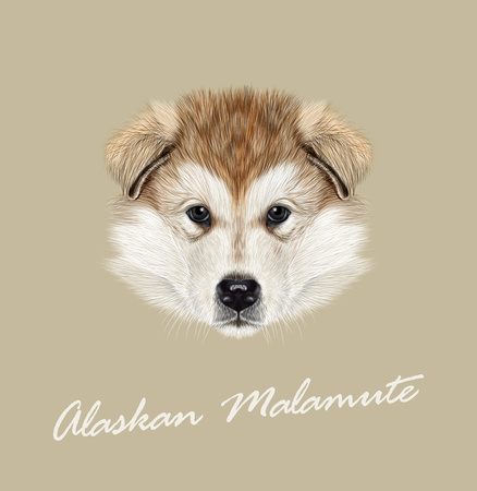 Vector illustrated Portrait of Puppy on tan background Illustration