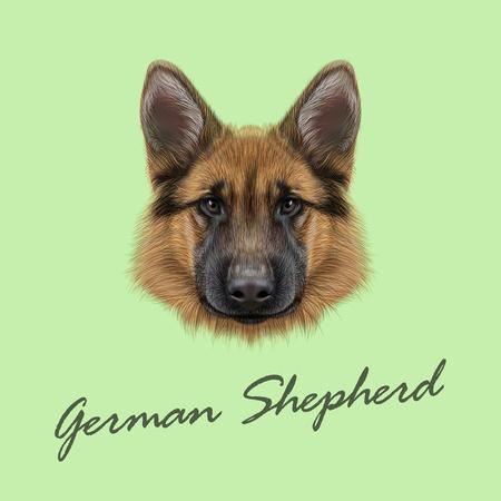 Vector Illustrated portrait of dog on green background. Stock Illustratie