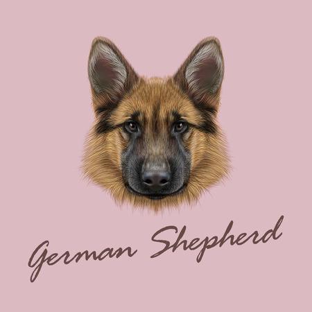 perro policia: Vector ilustrado retrato de perro en el fondo de color rosa.