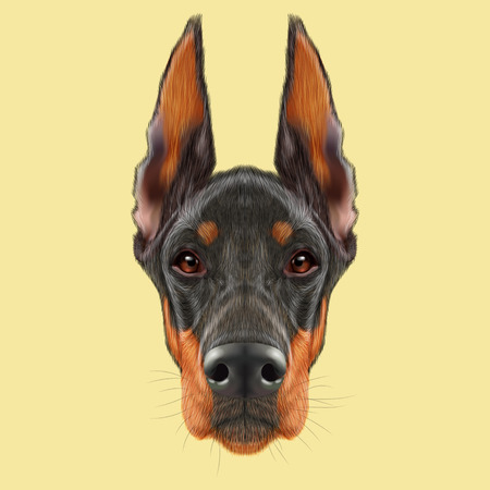 brown dobermann: Illustrated portrait of black dog on yellow background Stock Photo