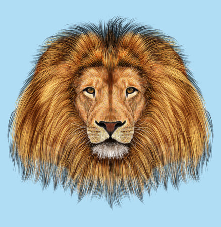 Illustrated portrait of Lion on blue background Stock Photo