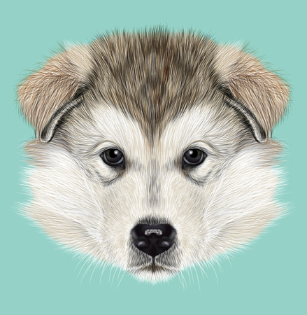 Illustrated Portrait of Puppy on blue background