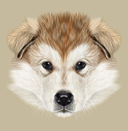 Illustrated Portrait of Puppy on tan background