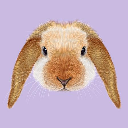 Geïllustreerd portret van rood puntkonijn op violette achtergrond. Stockfoto