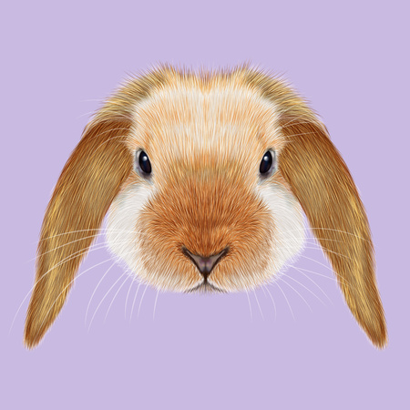 Illustrated portrait of red point Rabbit on violet background. 版權商用圖片