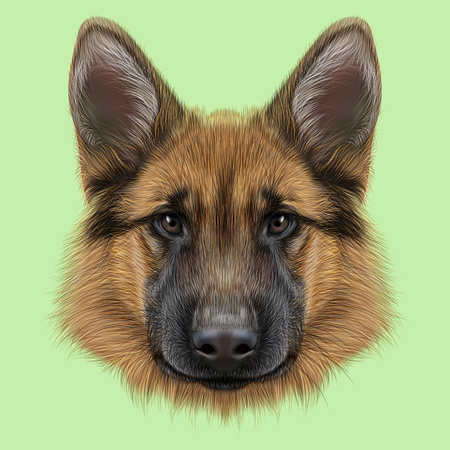 Illustrated portrait of dog on green background