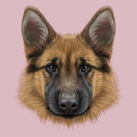 Illustrated portrait of dog on pink background Zdjęcie Seryjne