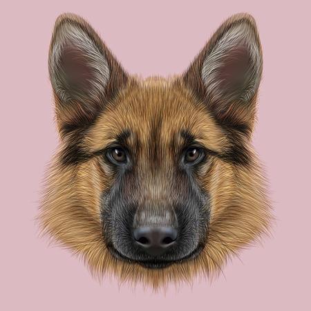 Illustrated portrait of dog on pink background Archivio Fotografico