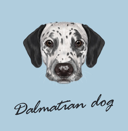 Vector illustrated portrait of black-spotted dog on blue background Ilustração
