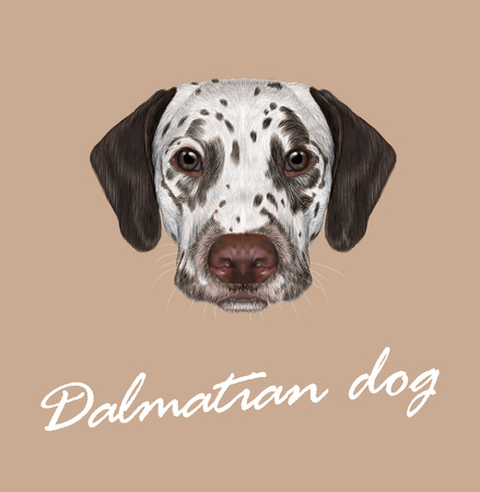 Vector illustrated portrait of brown-spotted dog on tan background