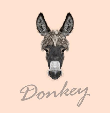 burro: Vector ilustrado retrato de burro gris en el fondo de color rosa