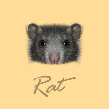 ベクトル図黄色の背景に灰色のラットの肖像画