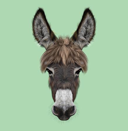 Geïllustreerd portret van bruin Ezel op groene achtergrond Stockfoto