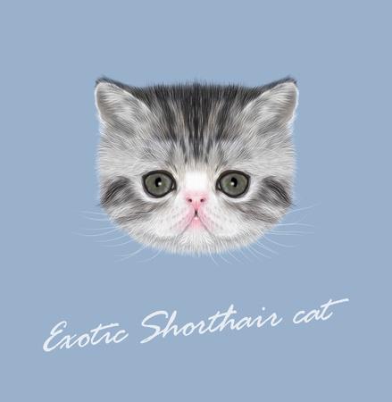 stipes: Vector Illustrated Portrait of black tabby kitten on blue background Illustration