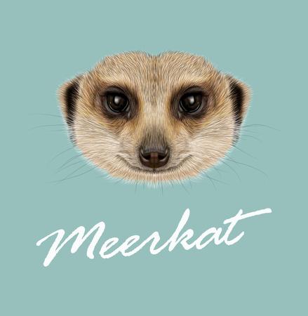Vector illustrated Portrait of Meerkat on blue background Illustration