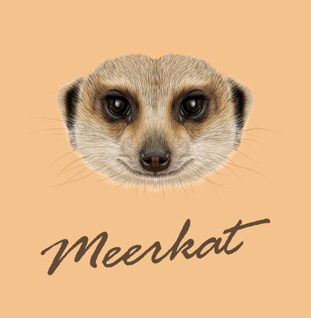 Vector geïllustreerd Portret van Afrikaanse Meerkat op tan achtergrond.